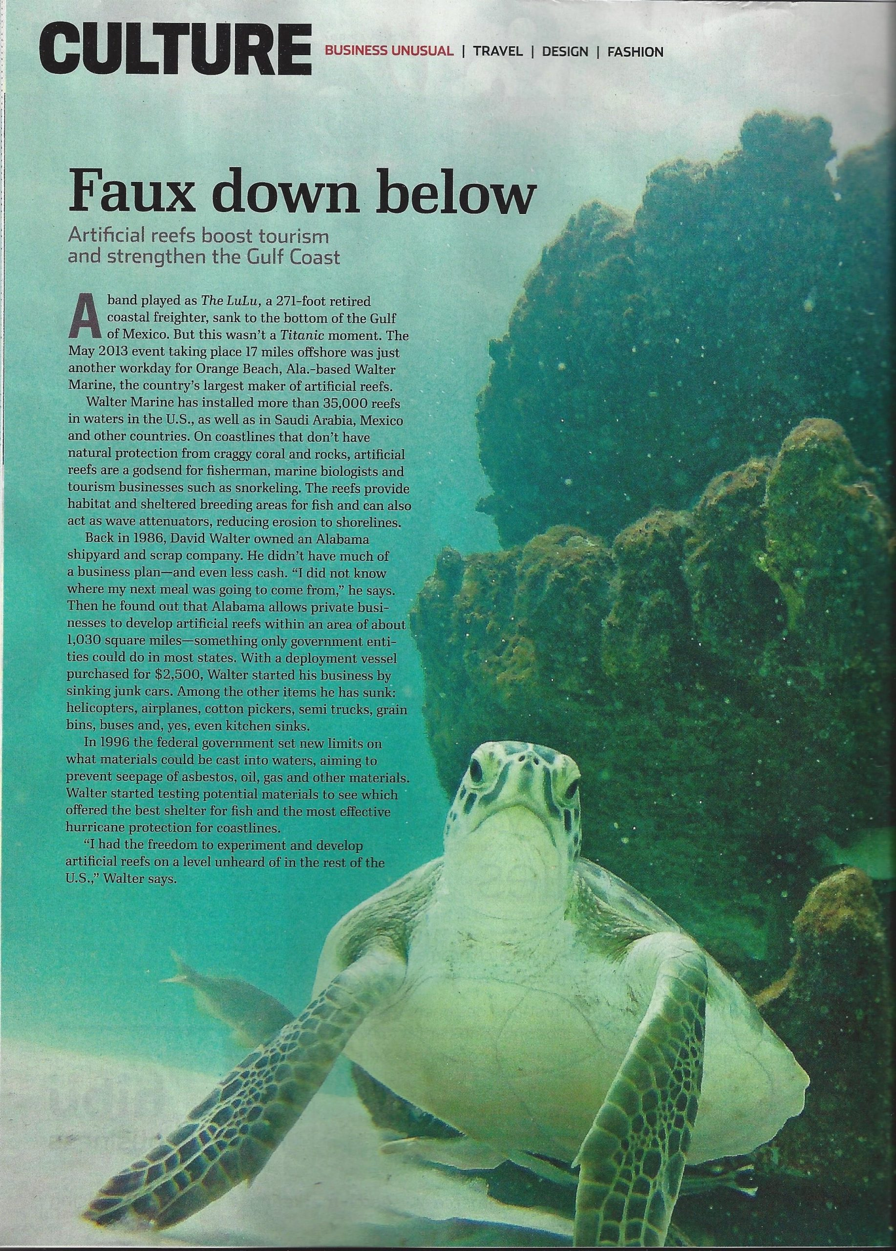 Reefmaker - Entrepreneur Magazine - Faux Down Below